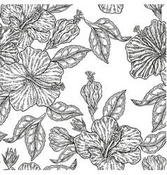 vintage hibiscus flowers seamless pattern vector image