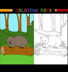 Cartoon wombat coloring book vector