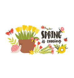 Decorative postcard template with spring is coming vector
