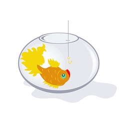 Fish in an aquarium vector image