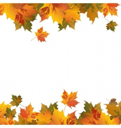 frame with leafs vector image
