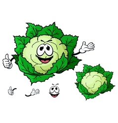 Happy smiling cartoon cauliflower vegetable vector image