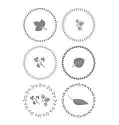herbal ornament frames set of graphic elements vector image