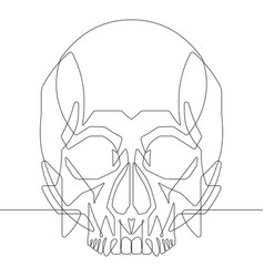 Human skull one continuous line graphic ill vector
