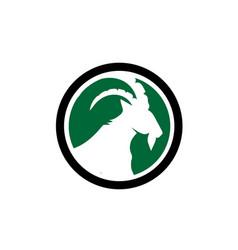 Ibex and deer simple modern logo designs vector