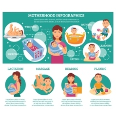 Motherhood Infographic Set vector