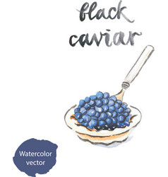 Watercolor black caviar vector