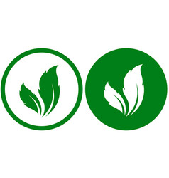 white and green leaf eco icons labels vector image