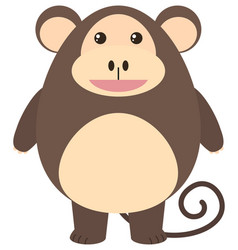 brown monkey with happy face vector image