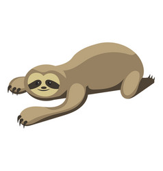 Cartoon sloth sloth vector