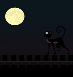 cat walking on the fence vector image