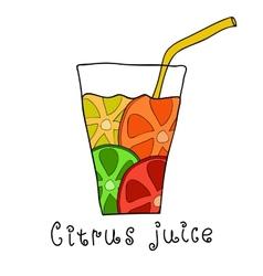 Doodle citrus juice vector image
