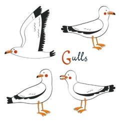 Hand drawn seagulls collection vector