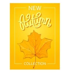 seasonal autumn poster vector image