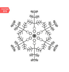 snowflake icon simple flat single color vector image