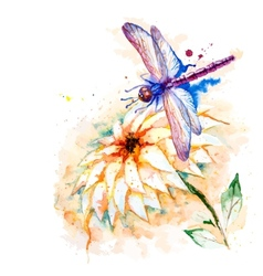 Water color dragonfly with lily flower vector