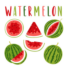 watermelon set with lettering isolated on white vector image