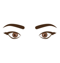 White background with female eyes and eyebrows vector