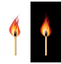 object fire match vector image vector image