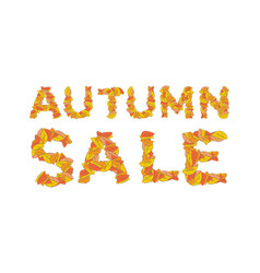 autumn sale yellow leaves of abc autumnal vector image