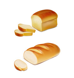 Bread slices and white loaf realistic vector