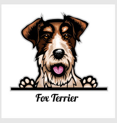 Color dog head fox terrier breed on white vector