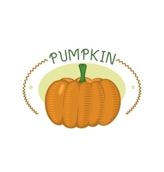 Fresh orange pumpkin badge isolated vector