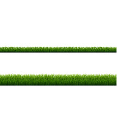 Green grass border with isolated white background vector