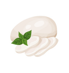 Mozzarella cheese with basil leaf dairy product vector