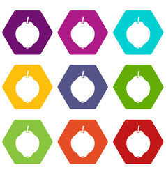 Quince fruit icon set color hexahedron vector