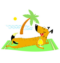dog resting on the beach on vector image