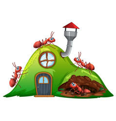 Ant hill house on white background vector
