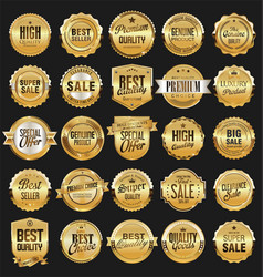 big sale retro golden badges and labels vector image