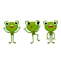 Funny green frog with protruding eyes showing vector