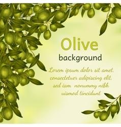 Olive oil background vector