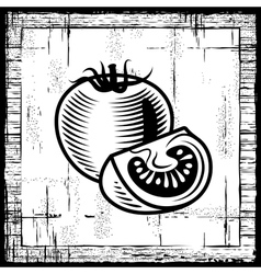 retro tomato black and white vector image