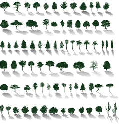 trees with shadows vector image vector image