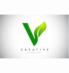 v leaf letter logo icon design in green colors vector image