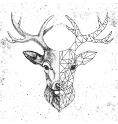 Hipster animal realistic and polygonal deer face vector