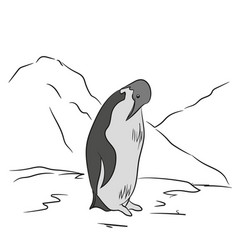 penguin sketch color vector image