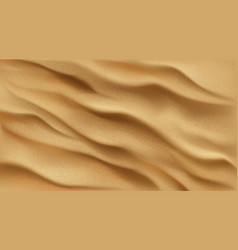 sand background top view desert or beach texture vector image