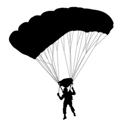 Skydiver silhouettes parachuting on a white vector