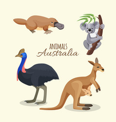 australia animals collection of brown kangaroo vector image vector image
