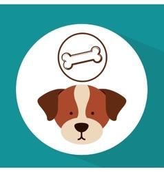 veterinary dog care bone food icon vector image