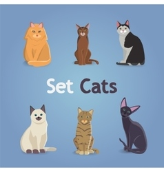 Collection of Cats and Dogs of Different Breeds vector image vector image