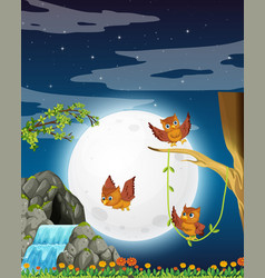 An owl in nature at night vector
