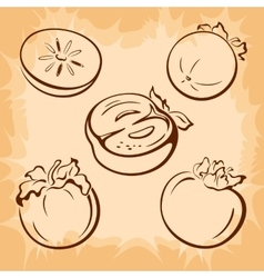Fruits persimmon pictograms vector