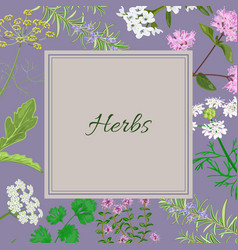 herbs square converted vector image