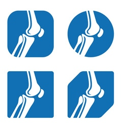 Human knee joint icons vector