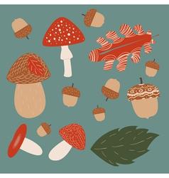 Mushroom hunting vector